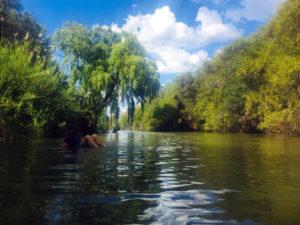 River Pic 4